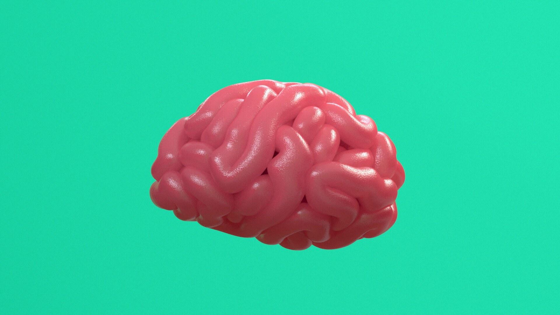 3d animasjon av en en slimete rosa hjerne for lotteritilsynets informasjonsfilms hjernen paa spill