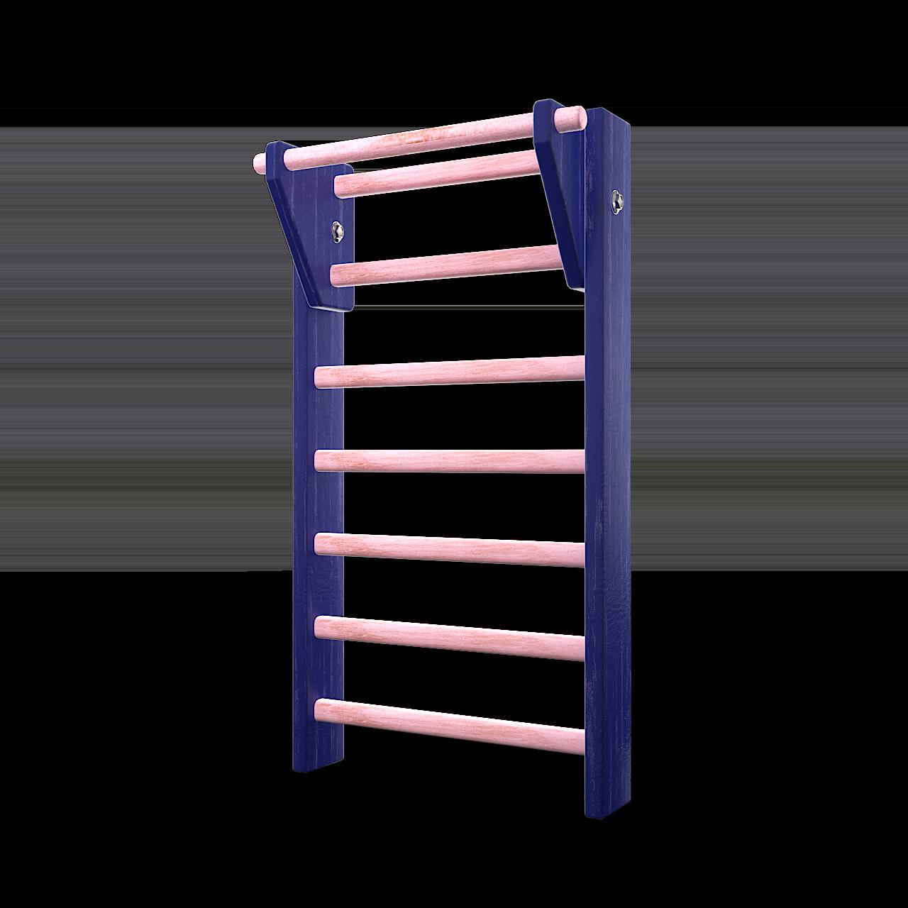 3d modell av en rosa og blaa ribbevegg i gymmen